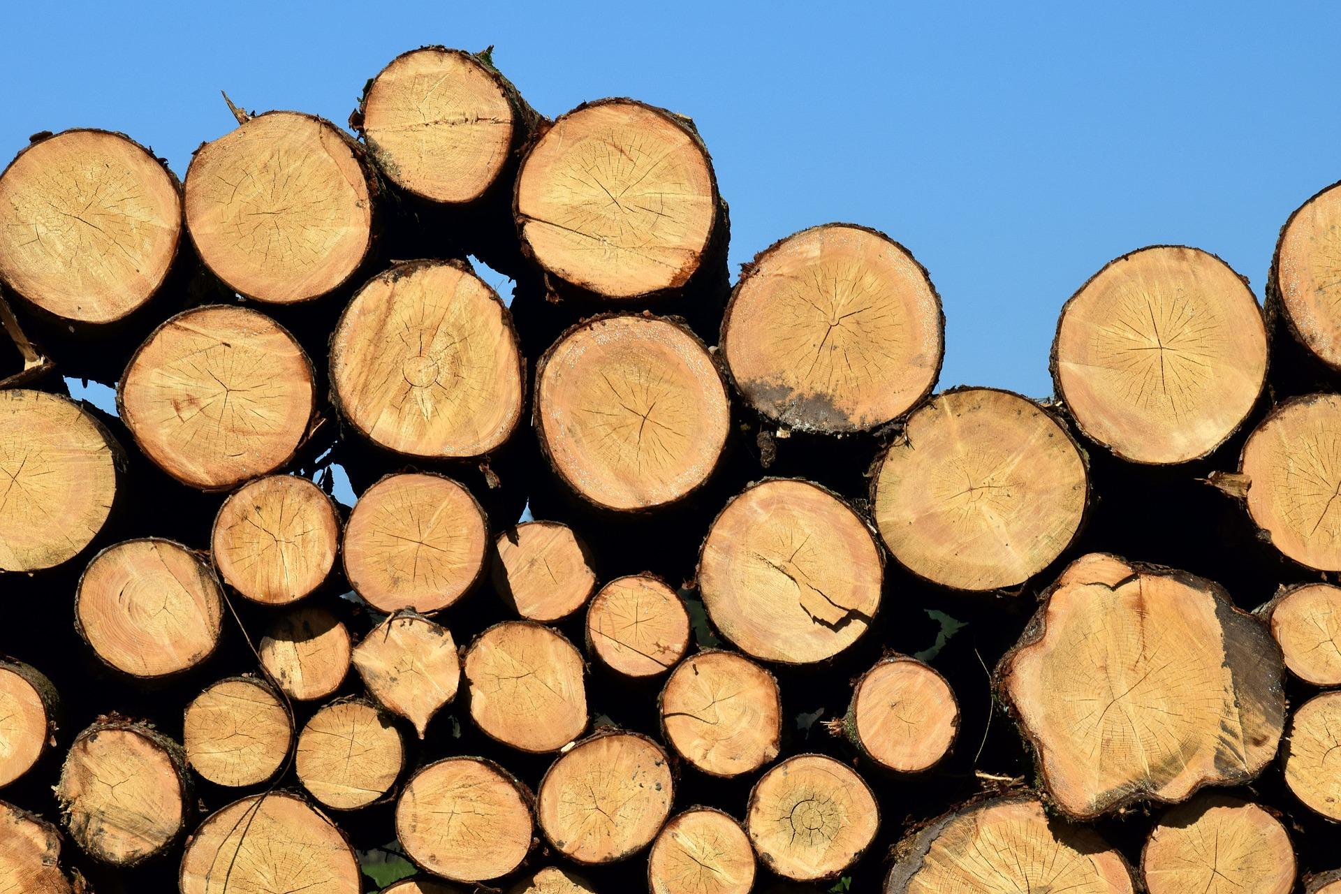 """""""Baltpool"""" atnaujino medienos kainų indekso skaičiavimo metodiką"""
