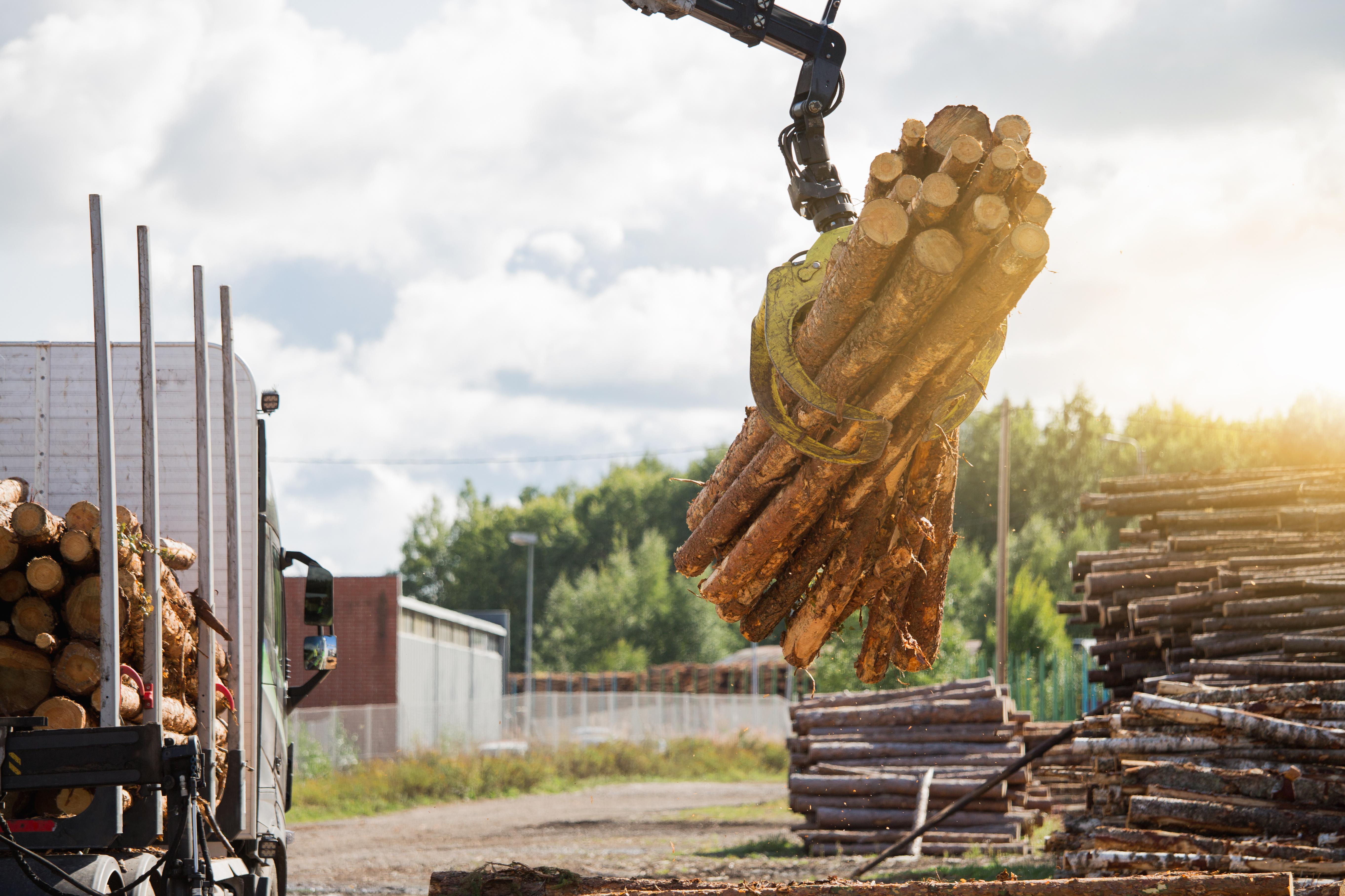 2021m. I pusm. medienos prekybos ilgalaikio ir pusmetinio aukcionų pavedimų sąrašas