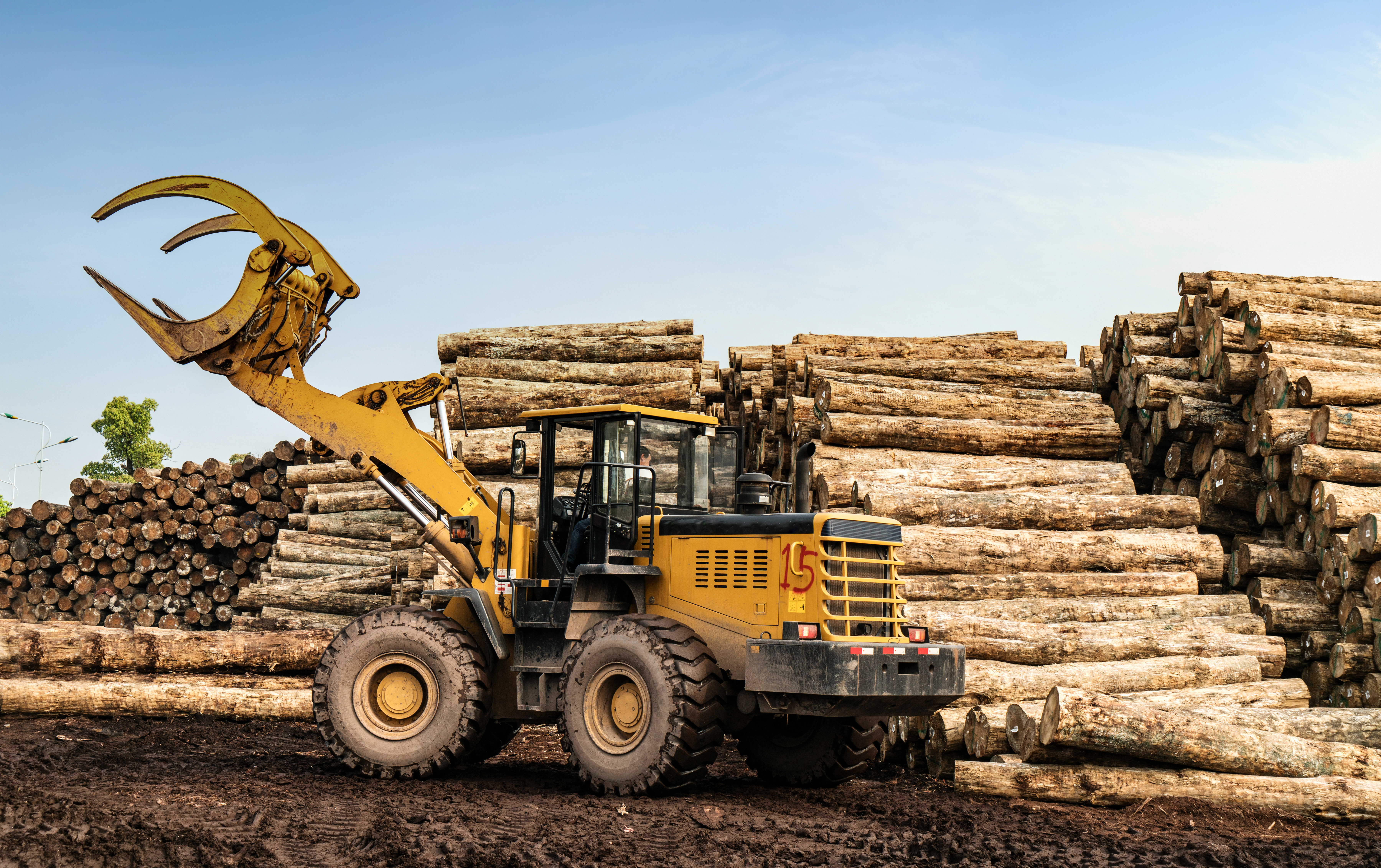 Timber Exchange Trade Overview – March of 2021